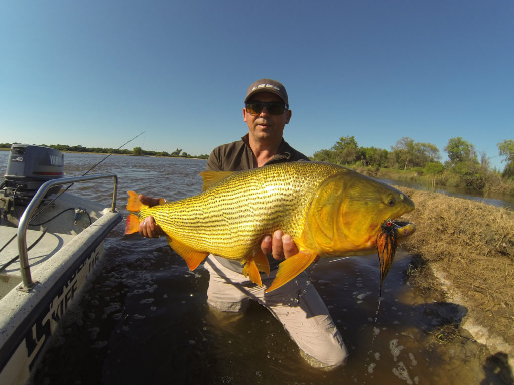 Argentina outfitters argentina s best fishing hunting for Fly fishing patagonia