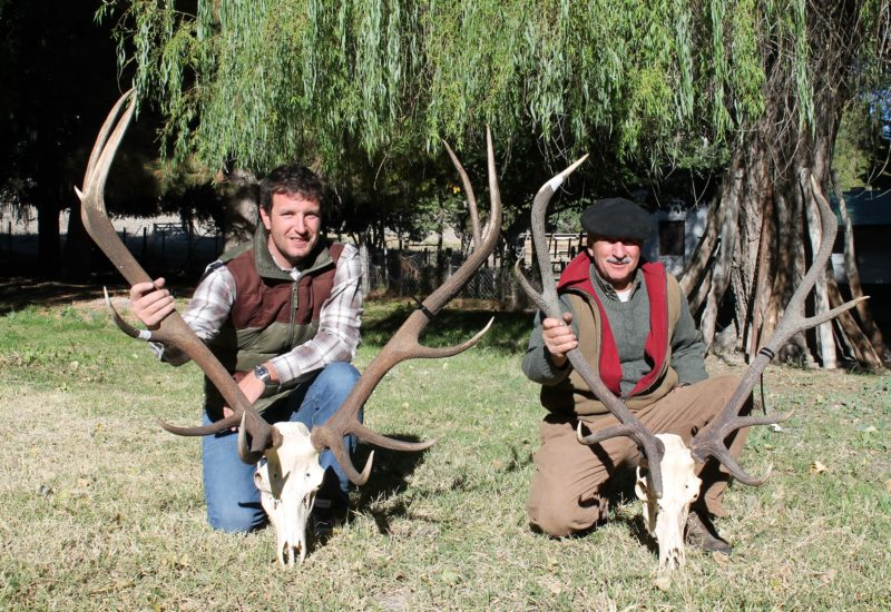 Argentina Red Stag Hunting21
