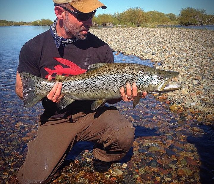 Argentina trout fishing 5