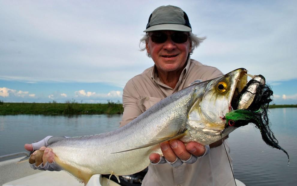 Golden Dorado River Cruiser1