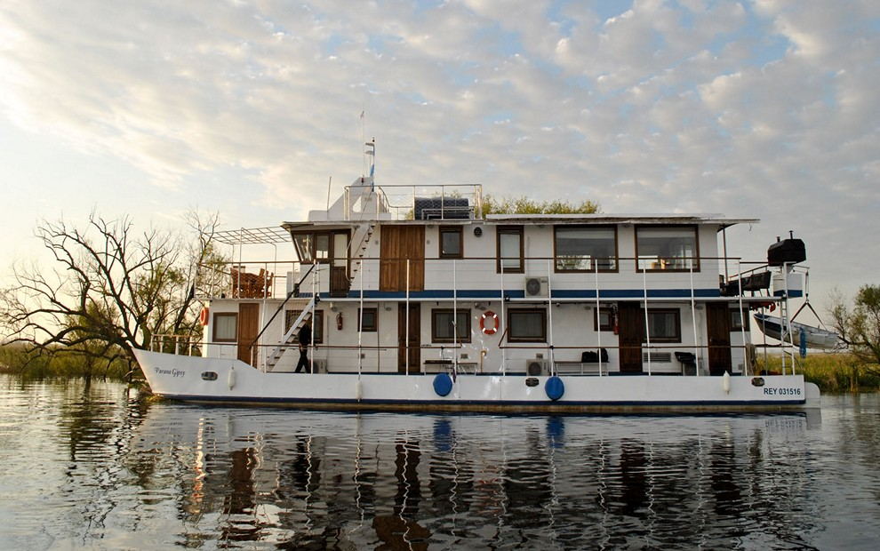 Golden Dorado River Cruiser2